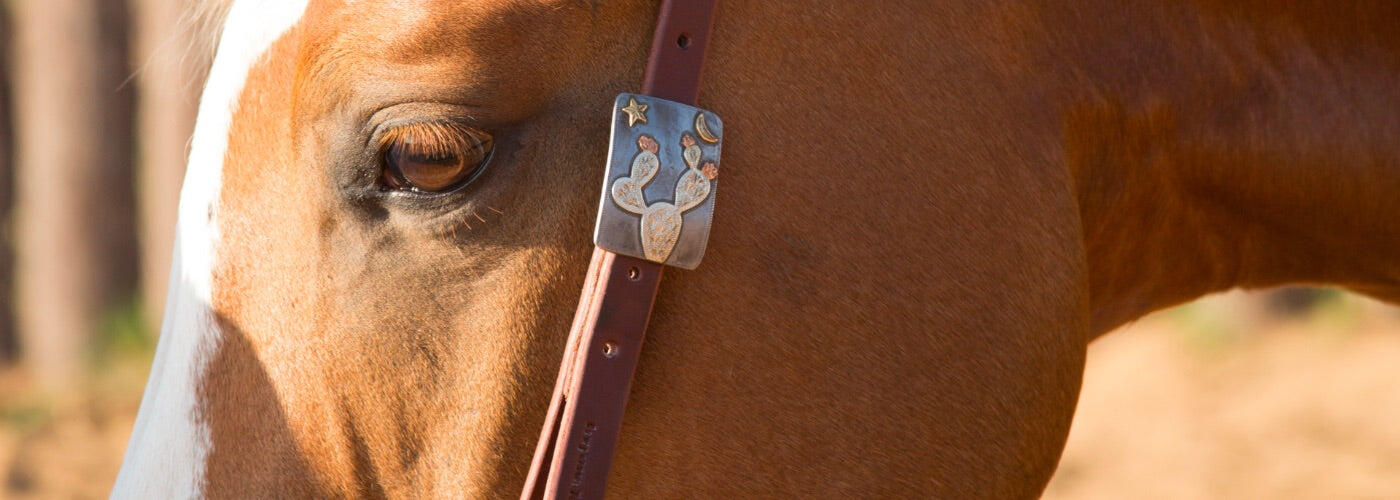 Top Cowperson Tack Bridles, Headstalls & More for 2021