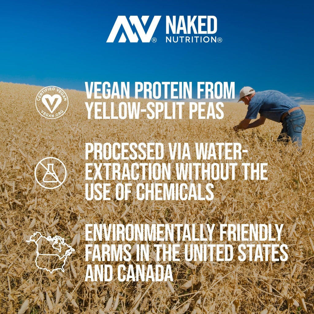 yellow pea protein powder sourcing
